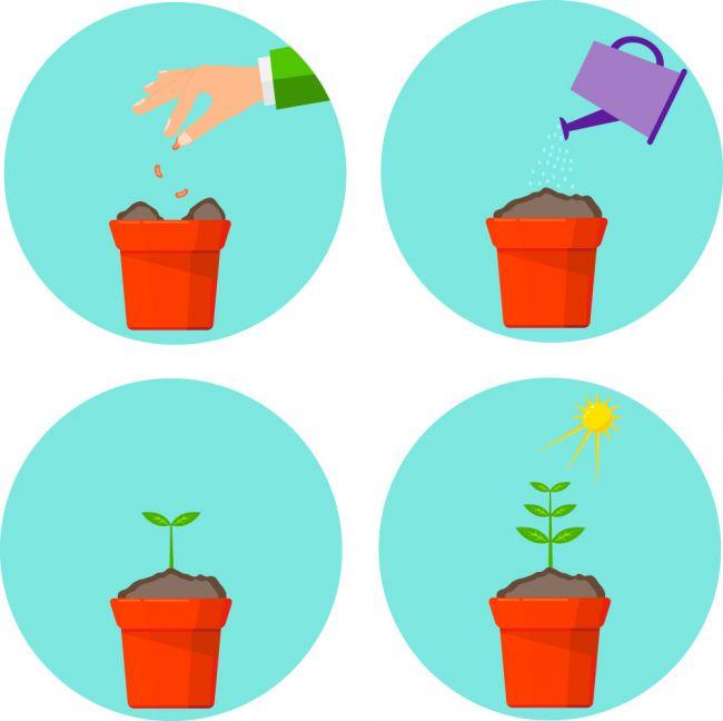 nurturing-marketing-automation